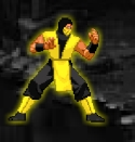 Kombat Fighter